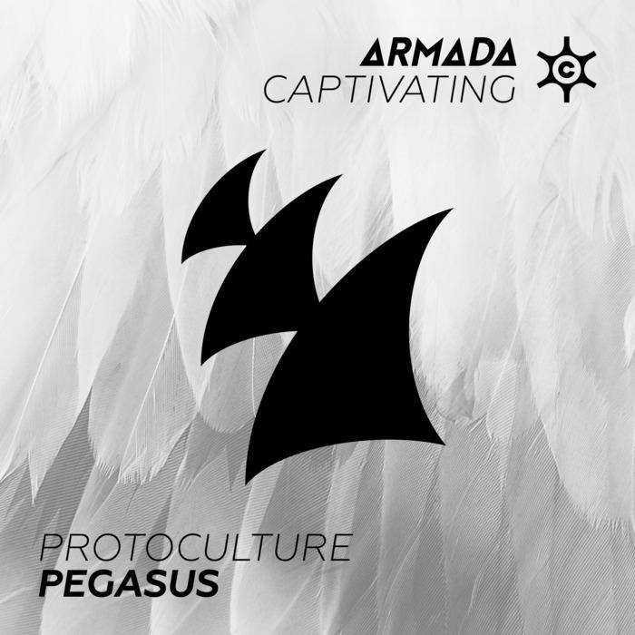 PROTOCULTURE - Pegasus