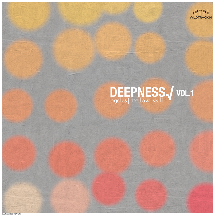 VARIOUS - Deepness Vol 1