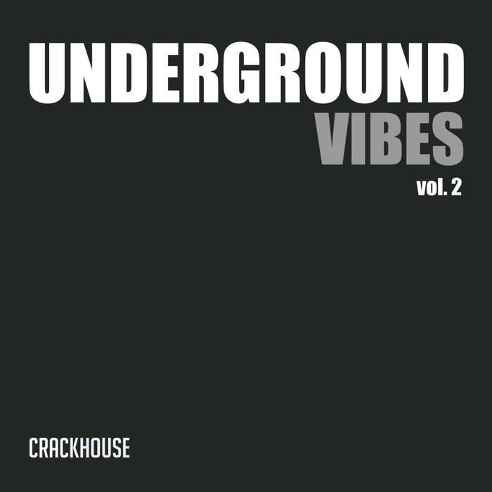 VARIOUS - Underground Vibes Vol 2