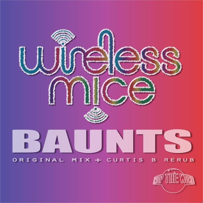 WIRELESS MICE - BAUNTS