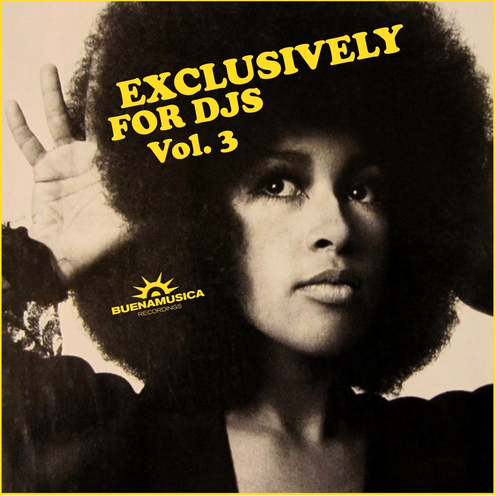 VARIOUS - Exclusively For DJs Vol 3