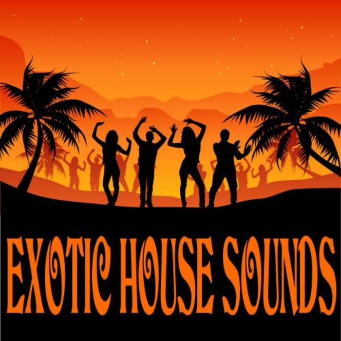 VARIOUS - Exotic House Sounds