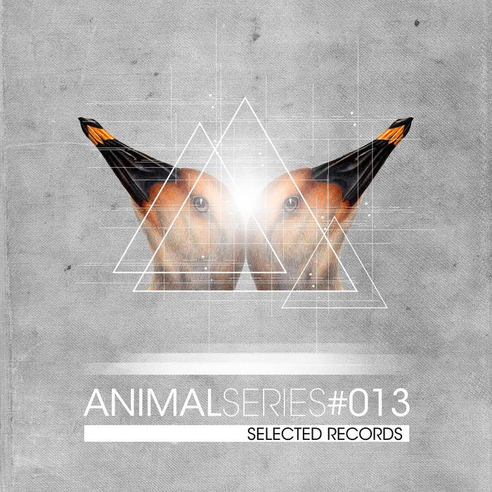 VARIOUS - Animal Series Vol 13