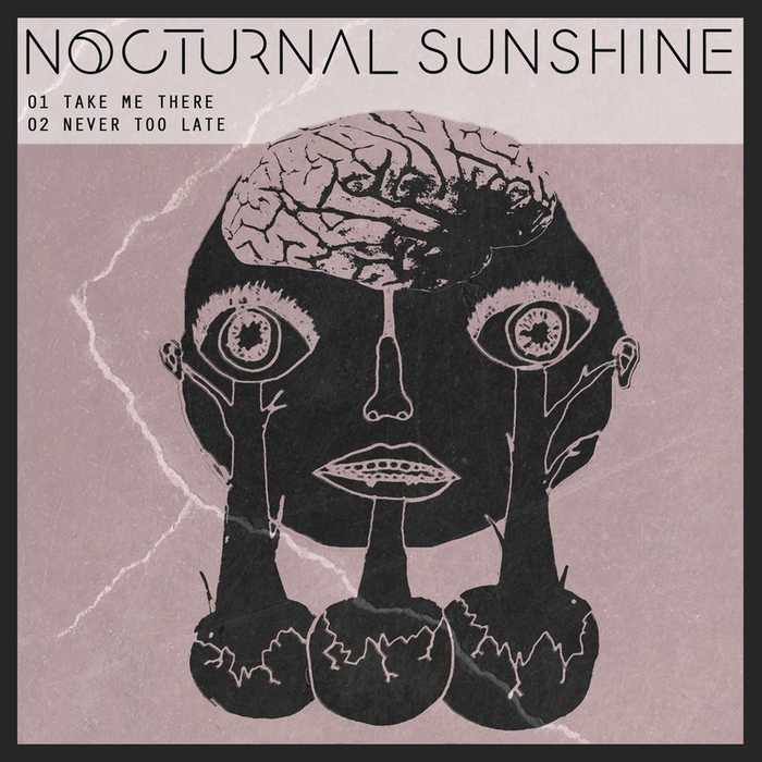 NOCTURNAL SUNSHINE - Take Me There