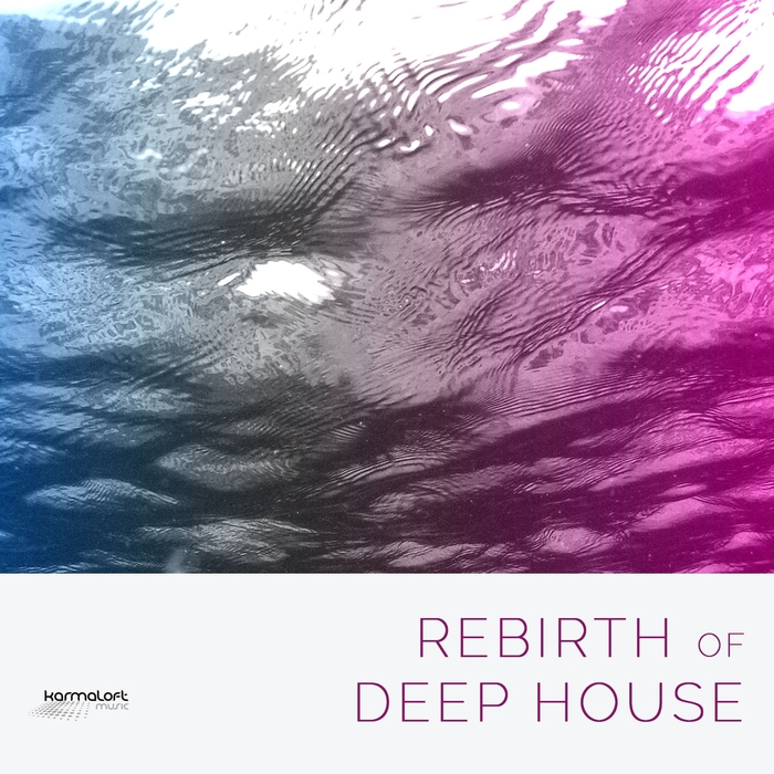 VARIOUS - Rebirth Of Deep House Vol 1