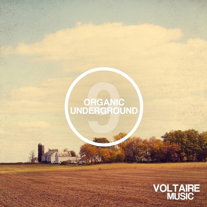 VARIOUS - Organic Underground Issue 9