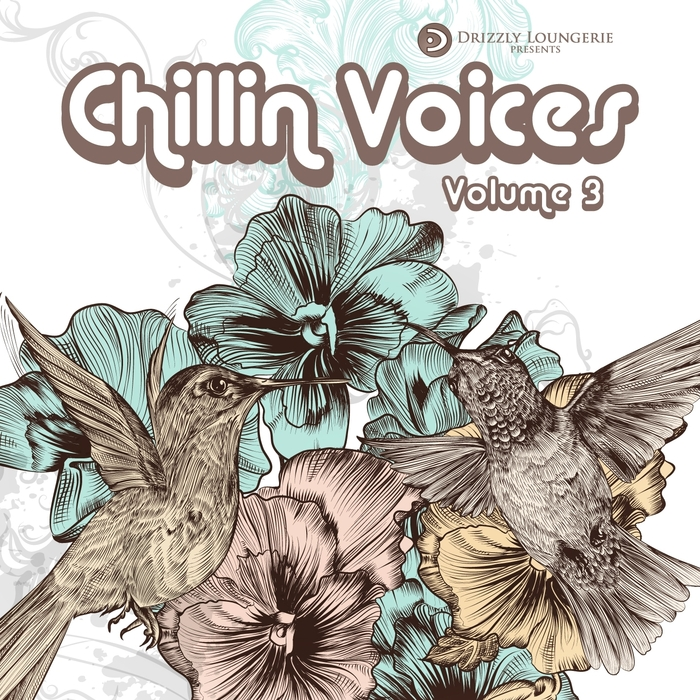 VARIOUS - Chillin Voices Volume 3 Beautiful & Relaxing Vocal Lounge Music