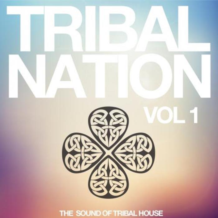 VARIOUS - Tribal Nation Vol 1