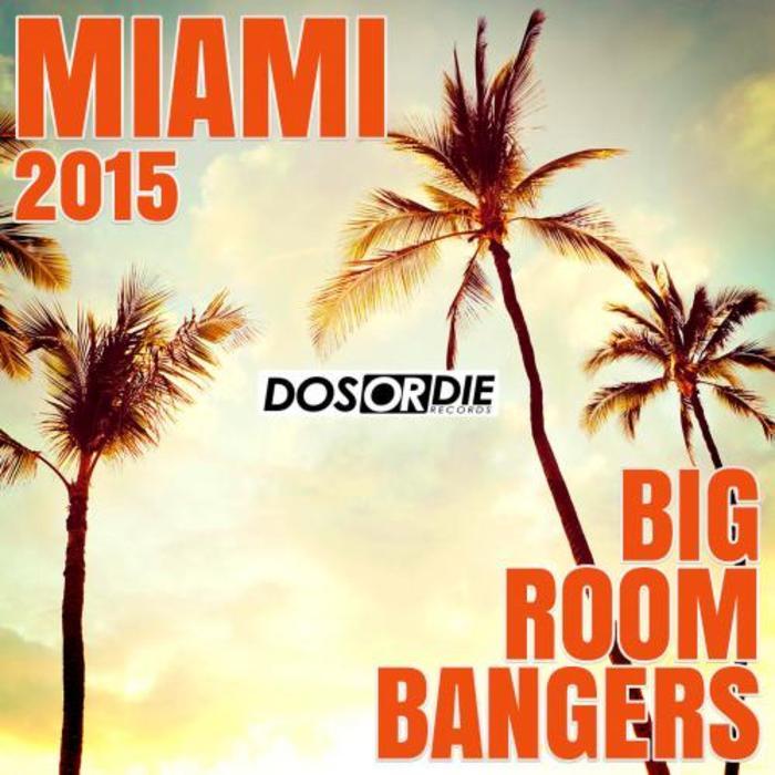 VARIOUS - Miami 2015 (Big Room Bangers)