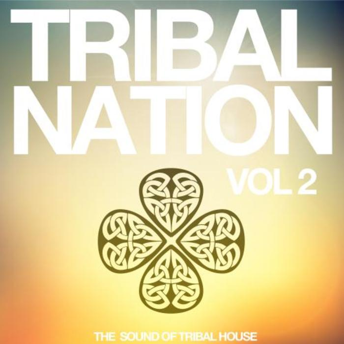 VARIOUS - Tribal Nation Vol 2