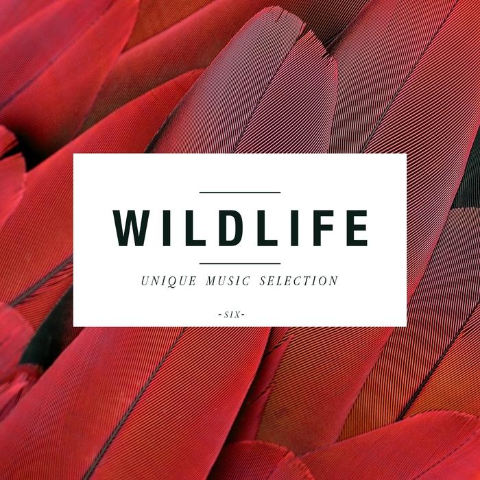 VARIOUS - Wildlife (Unique Music Selection Vol 6)
