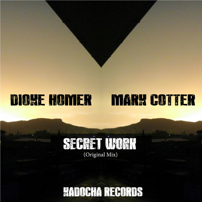 DIOKE HOMER/MARK COTTER - Secret Work