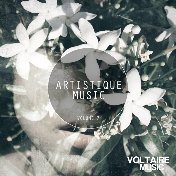 VARIOUS - Artistique Music Vol 7