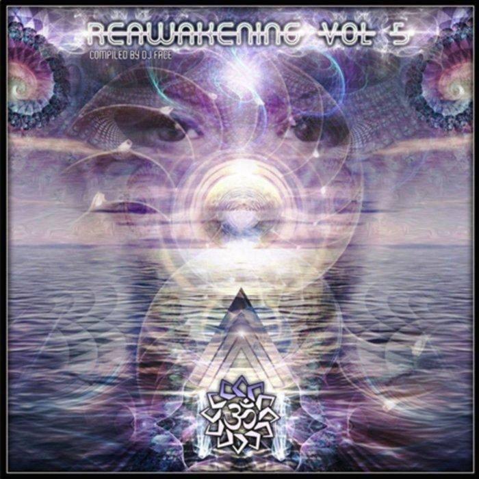 VARIOUS - Reawakening Vol 5