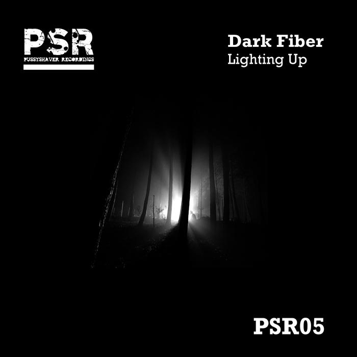 DARK FIBER - Lighting Up