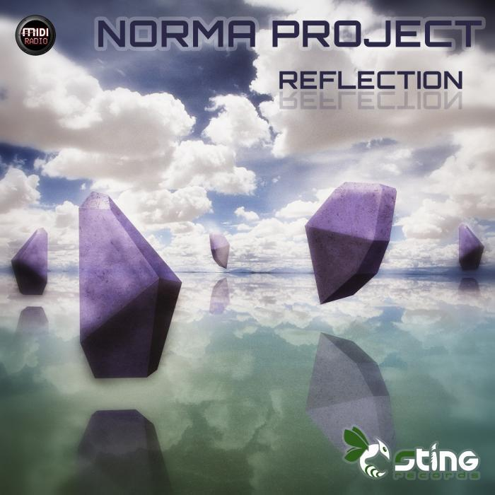 NORMA PROJECT/ASCENT - Reflection