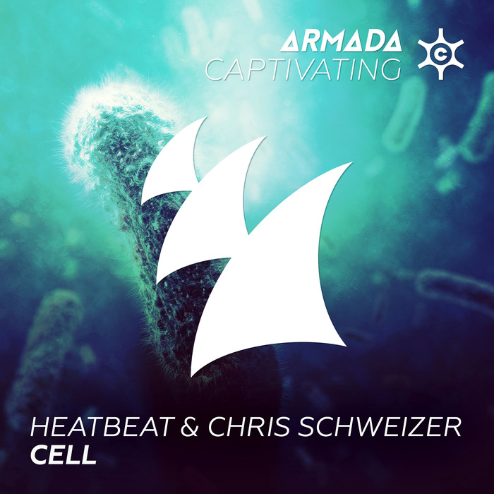 HEATBEAT/CHRIS SCHWEIZER - Cell