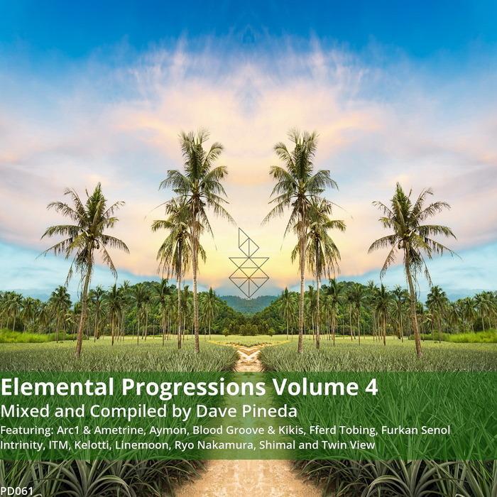 PINEDA, Dave/VARIOUS - Elemental Progressions Vol 4