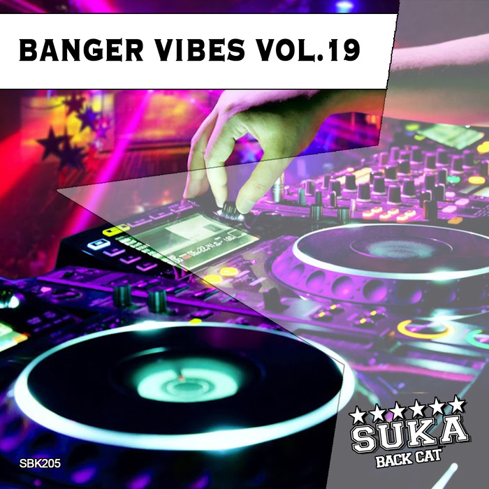 VARIOUS - Banger Vibes Vol 19