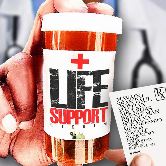 VARIOUS - Life Support Riddim
