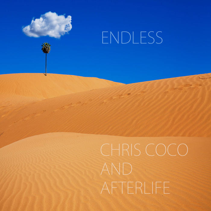 CHRIS COCO/AFTERLIFE - Endless