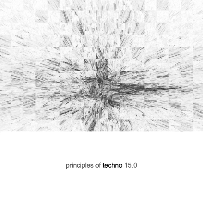 VARIOUS - Principles Of Techno Vol 15