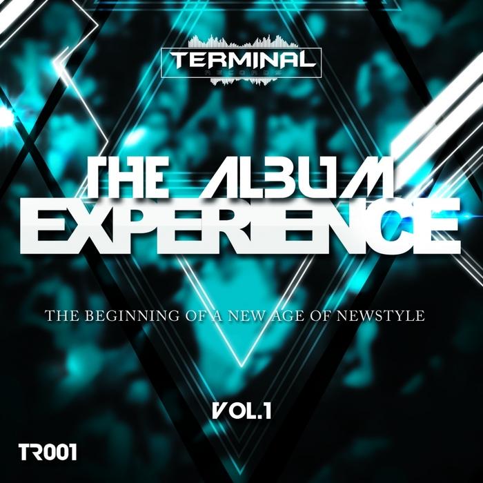 VARIOUS - The Album Experience Vol 1