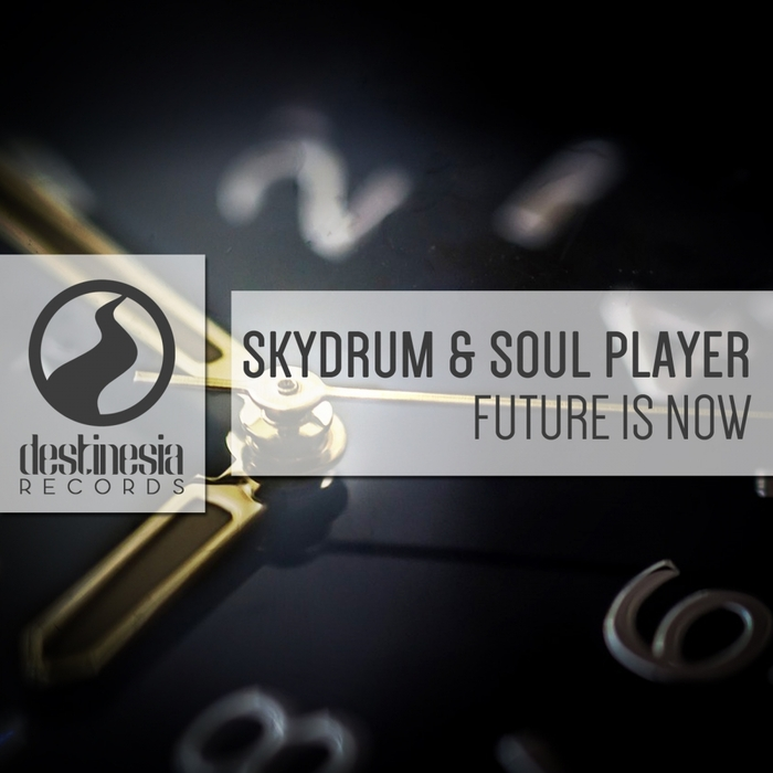 SKYDRUM/SOUL PLAYER - Future Is Now