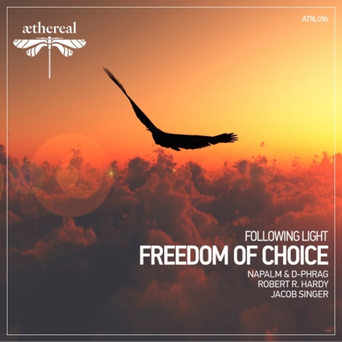 FOLLOWING LIGHT - Freedom Of Choice