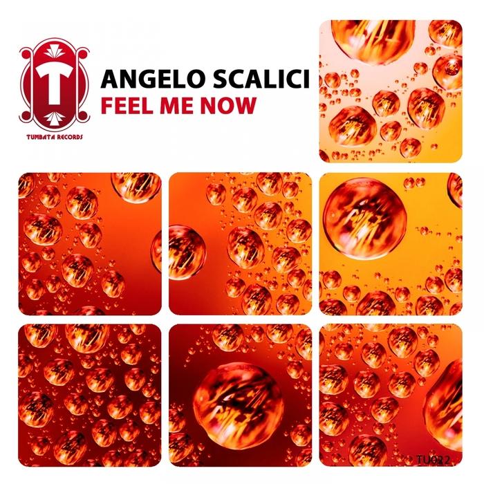 SCALICI, Angelo - Feel Me Now