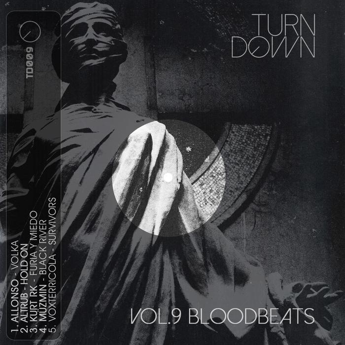 ALLONSO/ALTRUB/KURT RK/MUZMIN/VOXTERRICOLA - Turndown Vol 9 (Blood Beats)