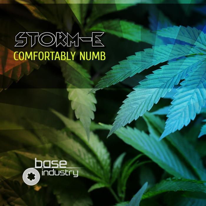 STORM-E - Comfortably Numb