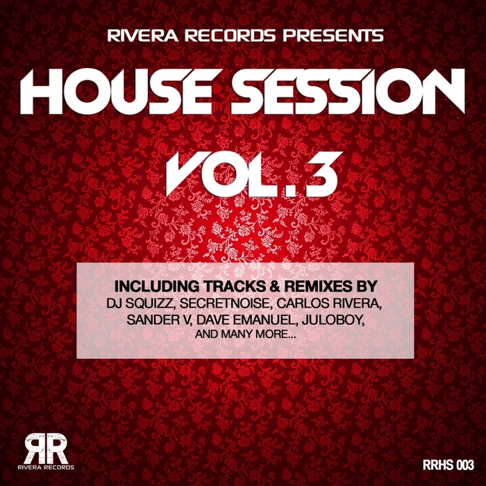 VARIOUS - House Session Vol 3