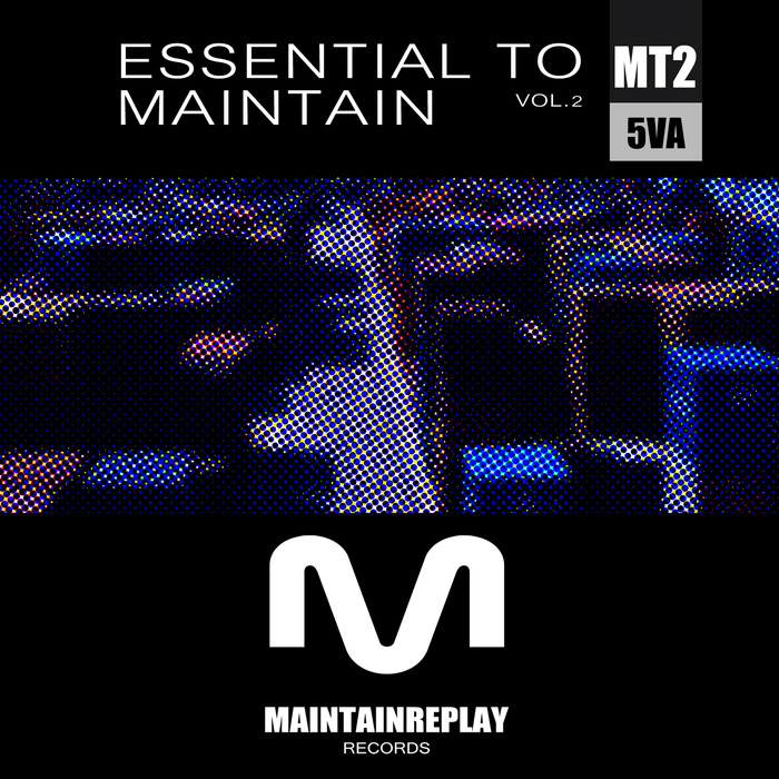VARIOUS - Essential To Maintain Vol 2