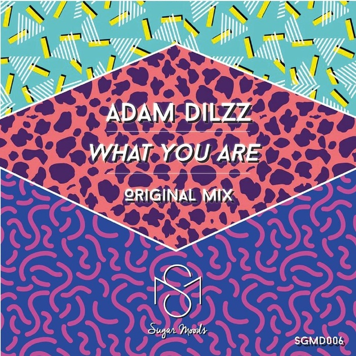 ADAM DILZZ - What You Are
