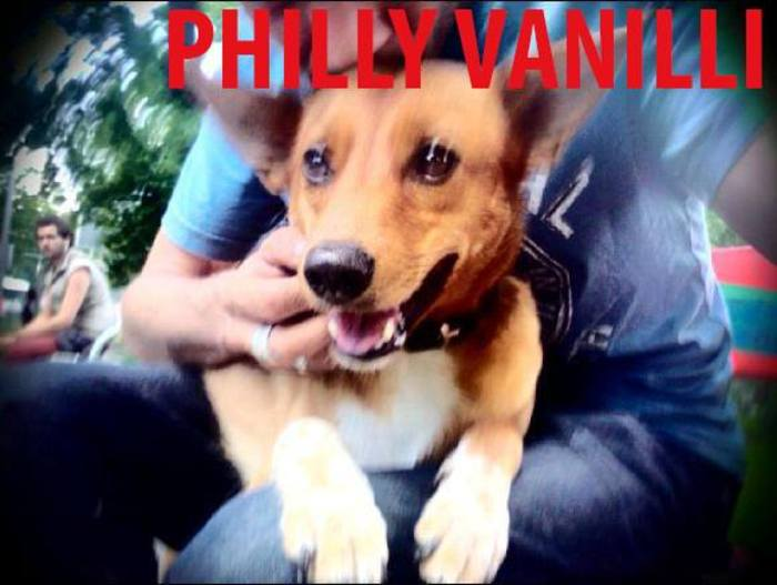 PHILLY VANILLI - The Hot Brathendl Session