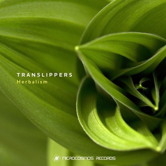 TRANSLIPPERS - Herbalism