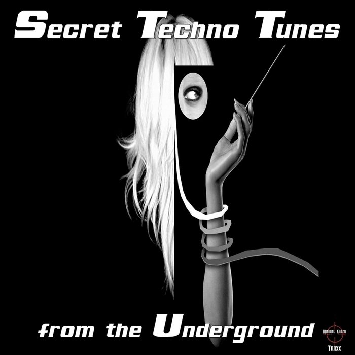 VARIOUS - Secret Techno Tunes From The Underground