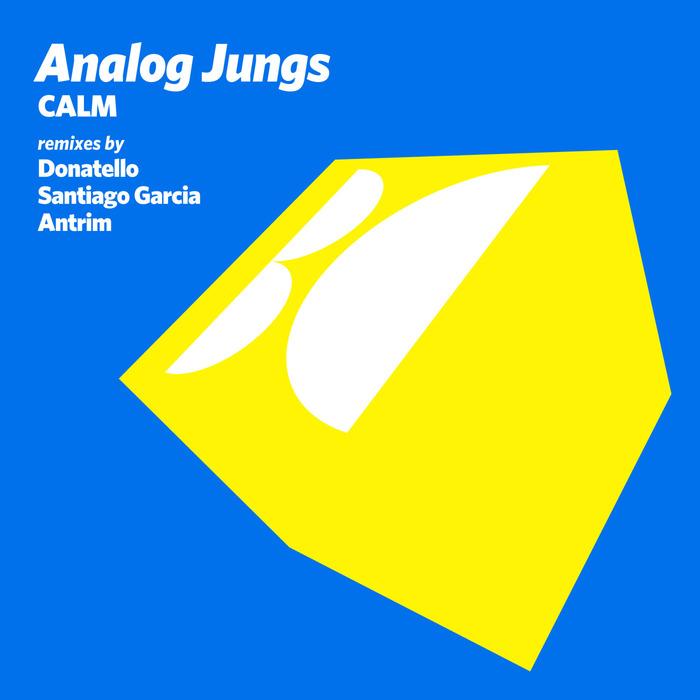 ANALOG JUNGS - Calm