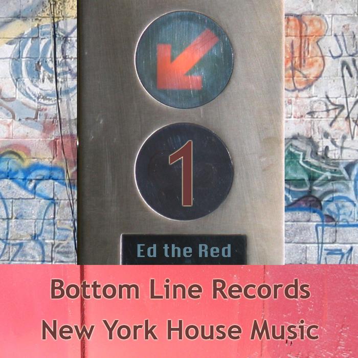 VARIOUS - New York House Music Vol 1