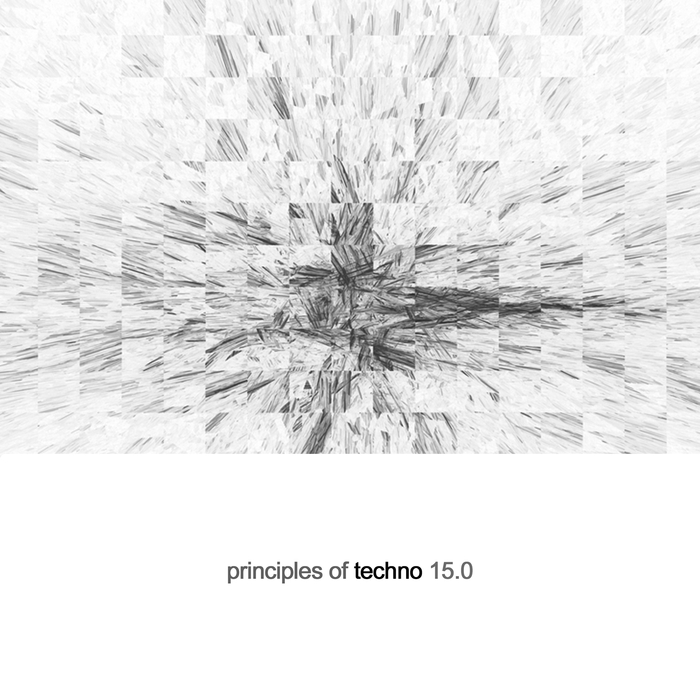VARIOUS - Principles Of Techno Vol 15