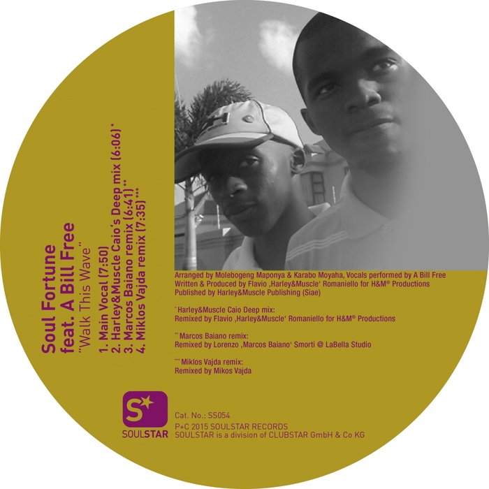 SOUL FORTUNE feat A BILLI FREE - Walk This Wave