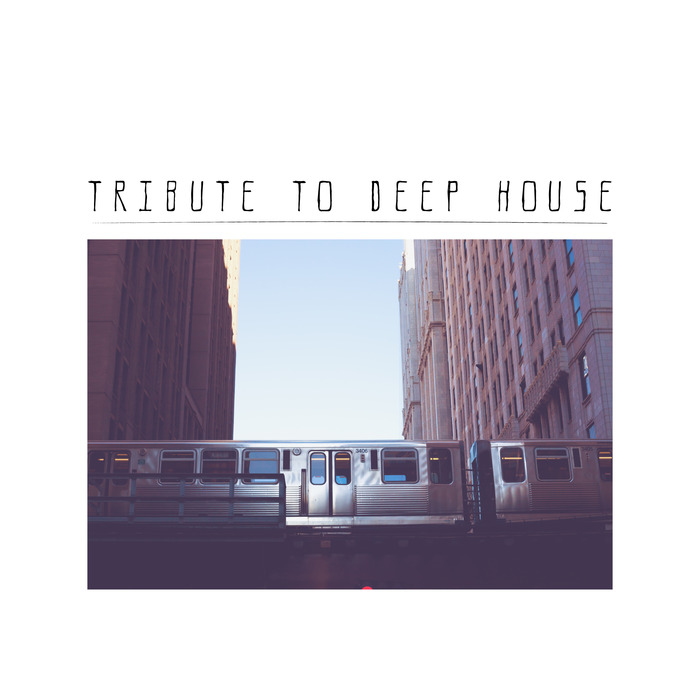 VARIOUS - Tribute To Deep House