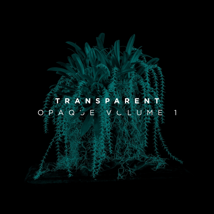 TRANSPARENT - Opaque Vol 1