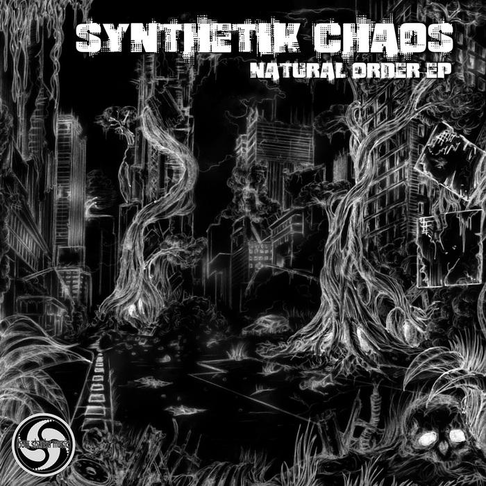 SYNTHETIK CHAOS - Natural Order