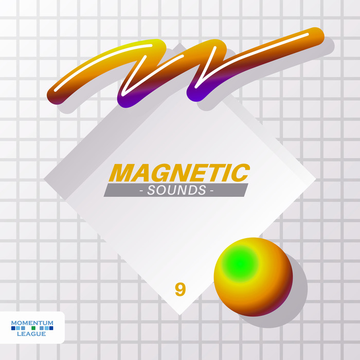 VARIOUS - Magnetic Sounds Vol  9