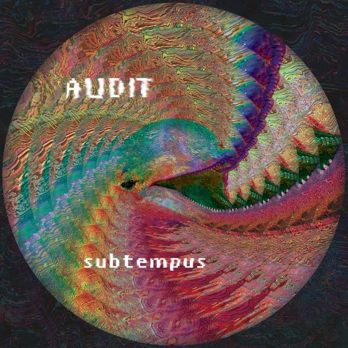 AUDIT - Sub Tempus