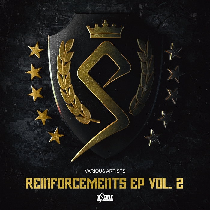 VARIOUS - Reinforcements Vol 2