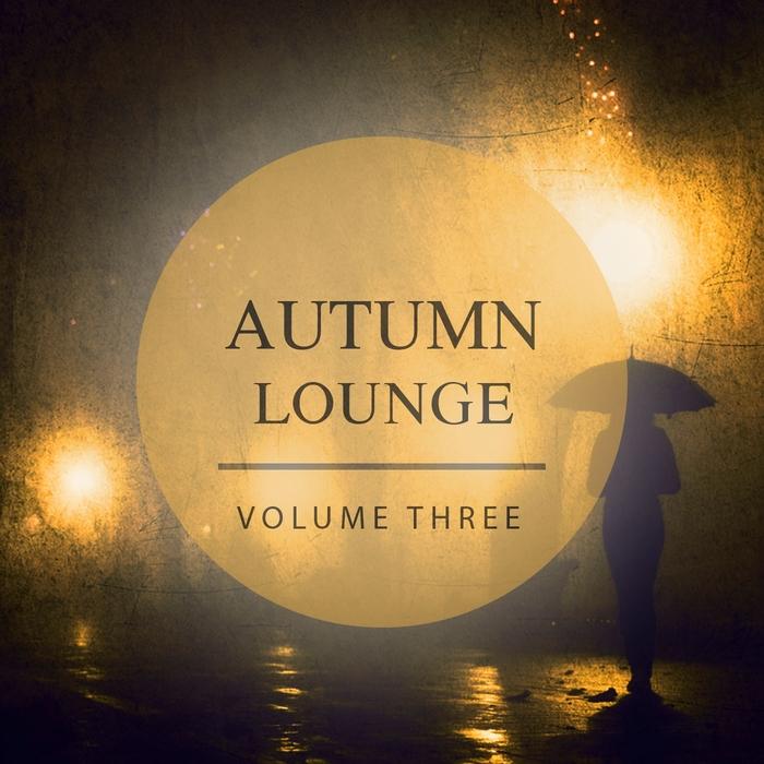 VARIOUS - Autumn Lounge Vol  3