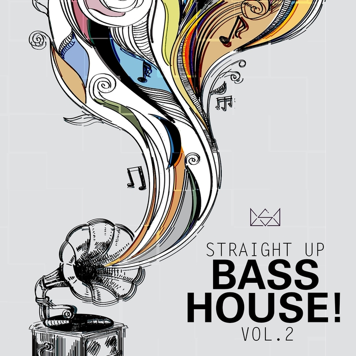 VARIOUS - Straight Up Bass House  Vol  2
